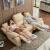 chersファーストクラスのソファーの本革とアメリカ式のシンプルな大中小型のリビングソファの組み合わせ8753メートルの黄色の15日間以内に出荷して3人が位を掛けます。